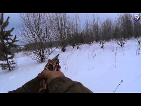 Охота на зайца 3 (сезон 2015-2016гг)  HUNTING HARE