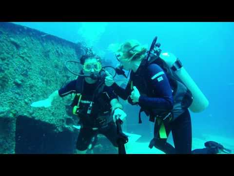 Cancun Scuba and Holbox Whale Sharks