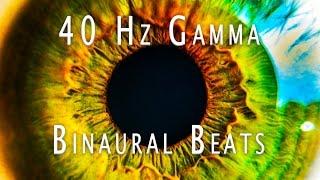 gamma binaural beats 40hz - Thủ thuật máy tính - Chia sẽ kinh nghiệm