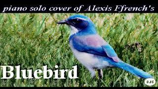 Alexis Ffrench   Bluebird ( Piano Solo Cover )