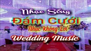 nhac-song-dam-cuoi-2020-day-moi-la-nhac-song-dam-cuoi-hay-nhat-moi-thoi-dai