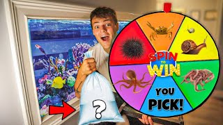BUYING WHATEVER the WHEEL Lands On!! **Saltwater Edition**