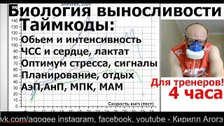 Тренировка выносливости по А. Вертышев