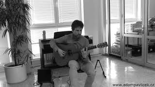 Video Adam Pavlíček - Coming Home (Hommage to Peter Finger) / live 4.4