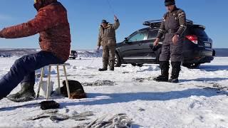 Ловля корюшки зимой в де кастри