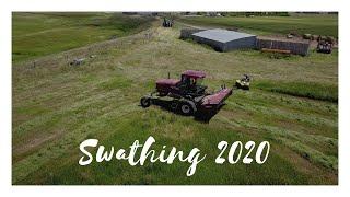 Swathing 2020 thumbnail