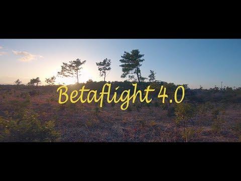 DYS Samguk Wei 2207 2600kv Betaflight 4.0