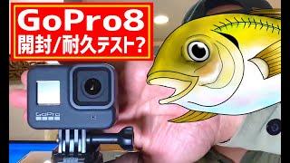 【GoPro8】開封レビューと耐久テスト!~ゴープロ8と格安アクションカメラと何が違うの?~