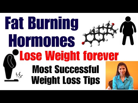 Top fat burning hormones lose weight forever most successful download top fat burning hormones lose weight forever most successful tips for weight loss in hindi in full hd mp4 3gp mkv video and mp3 torrent ccuart Choice Image