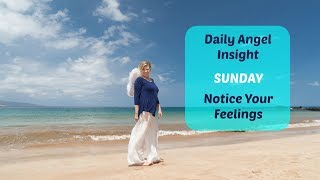 Daily Angel Insight: Notice Your Feelings