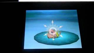 Venipede  - (Pokémon) - Shiny Venipede after 28722 encounters !