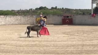 Así ENTRENA el diestro Antonio García EL CHIHUAHUA en el campo bravo