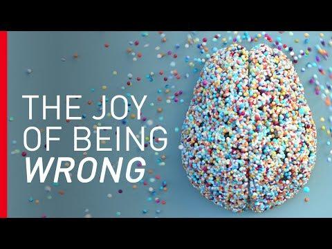 Radost z omylnosti