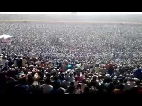 National Mauludi sheikh Ibrahim inyas  Iorin kwara state of Nigeria