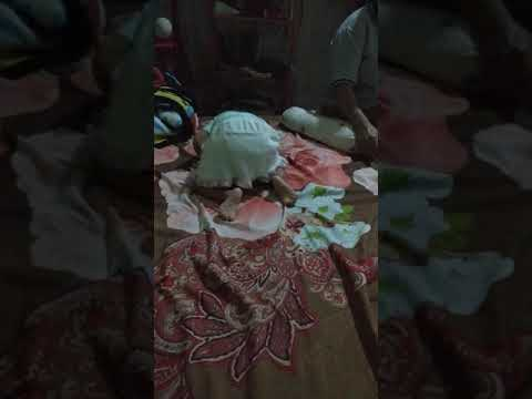 bayi latihan merangkak bayiku  ayesha azkadina