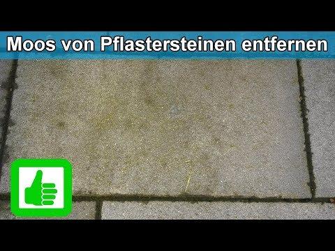 Moos & Grünbelag von Pflastersteinen ( Terrasse ) entfernen / Hausmittel Moosentferner - Anleitung