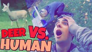 DEER VS. HUMAN!