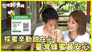 【在地鮮食尚】採蜜辛勤甜在心 臺灣蜂蜜最安心