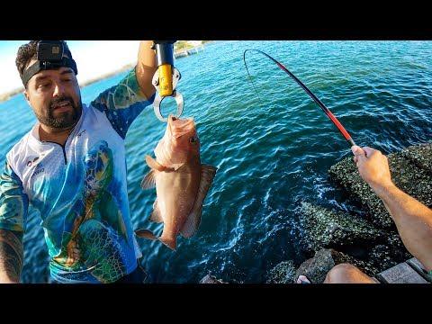 QUANDO VOCÊ ESPERA LAMBARI E VEM BALEIA!!! Pescaria.
