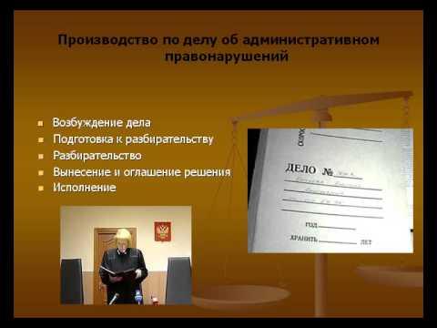 Презентация на тему Административная юрисдикция  Конституционное судопроизводство