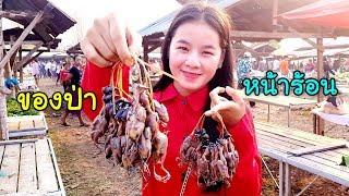 เที่ยวลาวหน้าร้อน EP.2 สาวม้งพาเดินชมตลาดขายของป่าแปลกตามากมาย