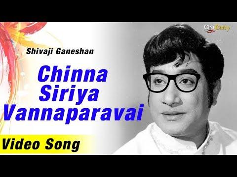 Chinna Siriya Vannaparavai   Song  Kungumam Movie   Sivaji ganesan   T. M. Soundararajan & S. Janaki