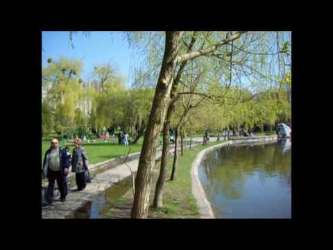 Город Ровно