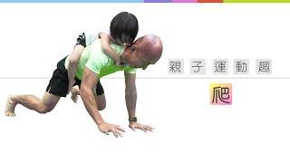i運動體能教室-親子運動趣-熊爬