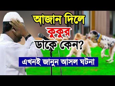 আজান দিলে কুকুর ডাকে কেন? আসল ঘটনা দেখুন | Azan Dile Kukur Dake Keno | Bangla Waz | Aziz Al kawser