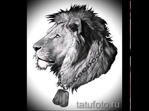 Лев тату эскизы   примеры лучших картинок для татуировки