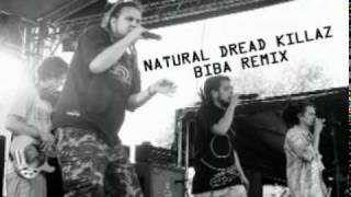 Natural Dread Killaz - Biba! ( Remix )