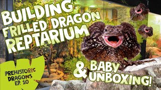 PD EPISODE 10: BUILDING FRILLED DRAGON REPTARIUM & BABY UNBOXING!