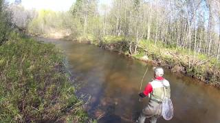 How to Make the False Cast in Fly Fishing
