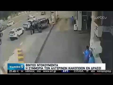 Βίντεο από δράση πολυμελούς σπείρας Αλγερινών έδωσε στη δημοσιότητα η Αστυνομία   02/06/2020   ΕΡΤ