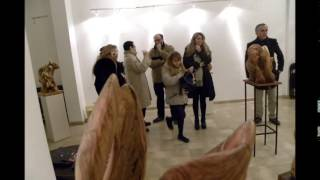 preview picture of video 'Donato Ungaro @ Globalart di Rosa Didonna - 10 01 2015'