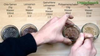 Vergleich: Leinsamen, Chia-Samen, Flohsamenschalen und Sägemehl (Wasseraufnahme) (Ep. 127)