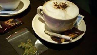Best Marijuana Documentary You Will Ever Watch!