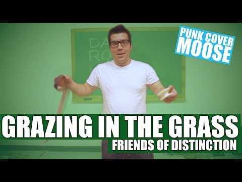Friends Of Distinction - Grazing In The Grass (Punk Cover Moose punk goes cover pop punk to pop)
