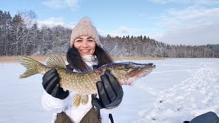 С женой на рыбалке. Взяли щуку. Подлёдное видео атаки щуки на живца. Красивое озеро. Супер рыбалка.