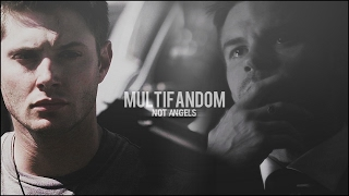 ► Multifandom ● А мы не ангелы {thanks for 700 SUBS}