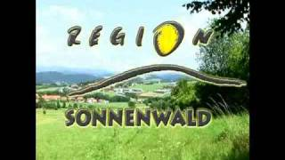 preview picture of video 'Region Sonnenwald'