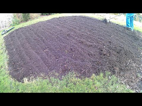 , title : 'Preparing Vegetable Patch For Brassicas (Cabbages)