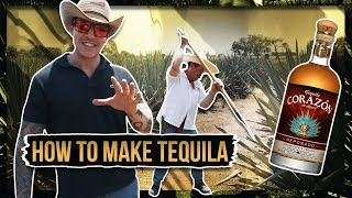 HOW TEQUILA IS MADE
