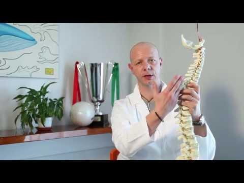 Caratteristiche di una struttura di una formazione di spina dorsale di lordoz e kifoz