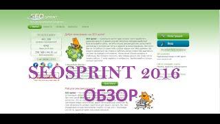 Seosprint - новый обзор 2016. Положительные и отрицательные отзывы о Сеоспринте