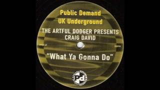 The Artful Dodger - What Ya Gonna Do (Artful Dodger Mix)