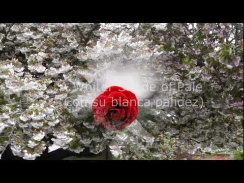 "(HD 720p) ""Con su blanca palidez"", A Whiter Shade of Pale"