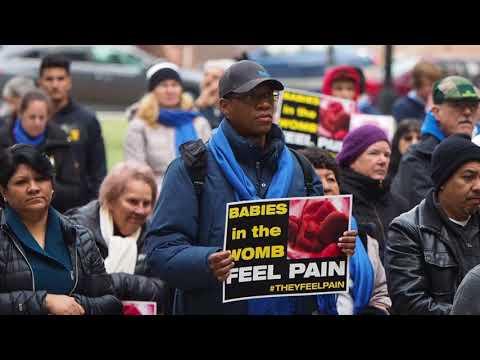 Pro-life demonstrators rally in Trenton