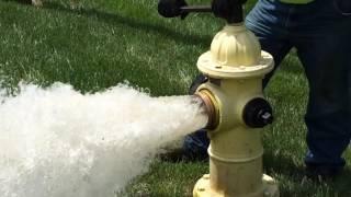 Fire Hydrant Flow Test & Flush