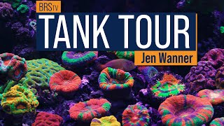 5-Minute Guide To Saltwater Aquariums